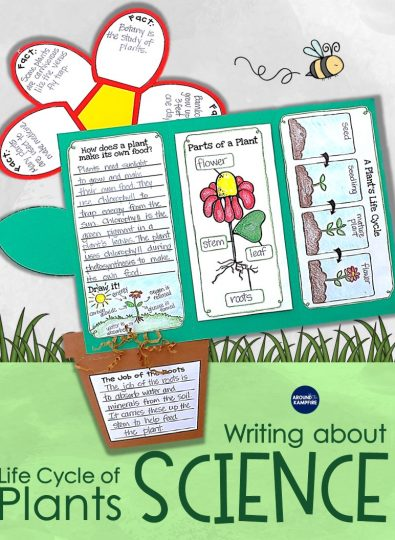 Plant life cycle activities-guiding students to write about science. Part of a complete plants science unit for 1st, 2nd, and 3rd grade.