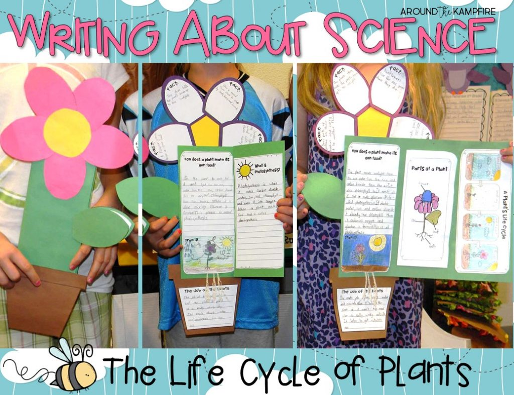 Plant life cycle activities-Writing to degine, label, research, and explain. Part of a complete science unit for teaching the plant life cycle for 1st, 2nd, and 3rd grade.