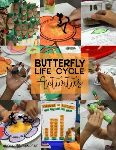 Butterfly life cycle activities and FREE printables for YOUR classroom! Learning laabs for integrating literacy, writing and math into your butterfly life cycle science study.