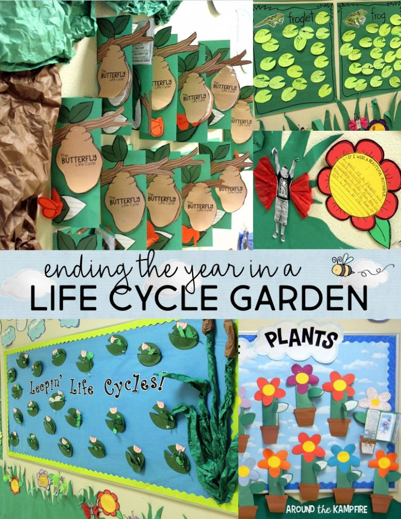Life Cycle Garden Hallway Display