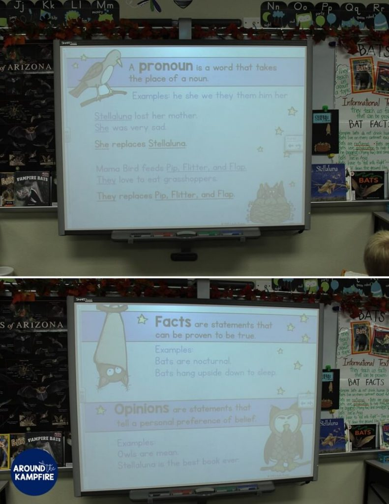 Stellaluna SMARTBoard activities- A fun way to teach reading skills, text structure and grammar when working with the book. Perfect for literacy centers too!