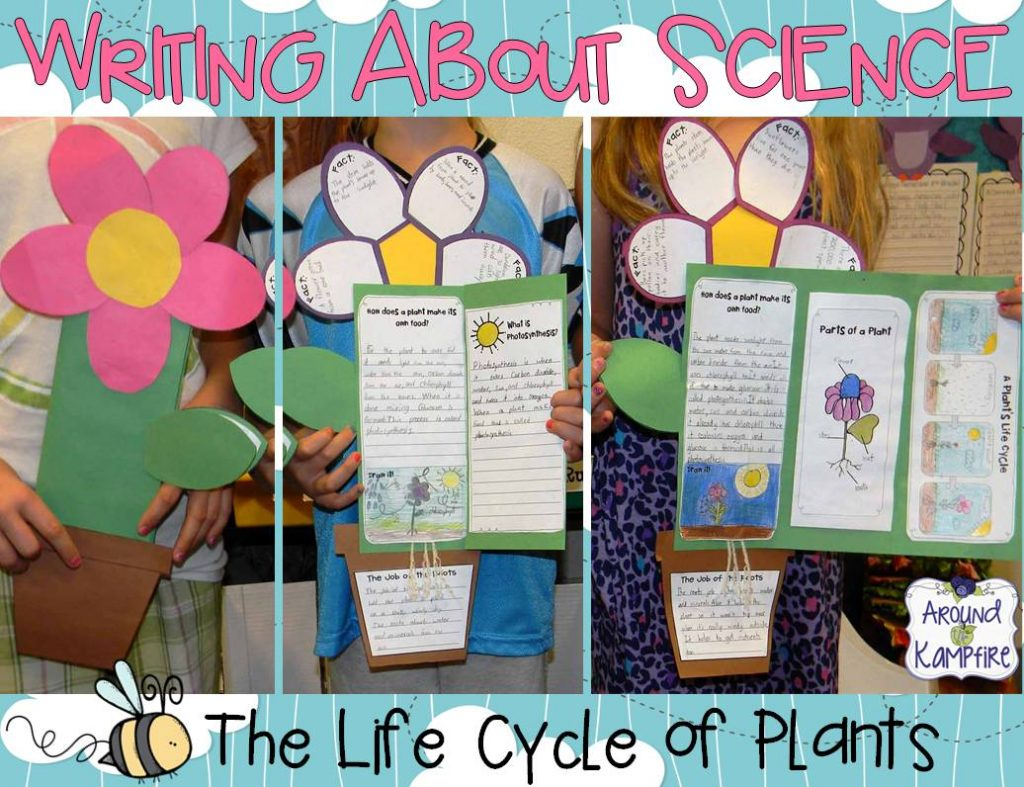 Plant life cycle writing foldable flower booklet
