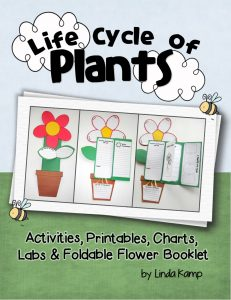 Plant Life Cycle Unit Linda Kamp