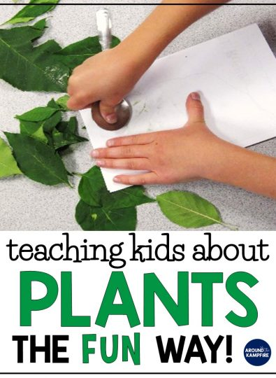Plant Life Cycle Activities for Kids-Teaching Plants the Fun Way!