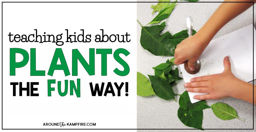 Fun Science Activities For Kids