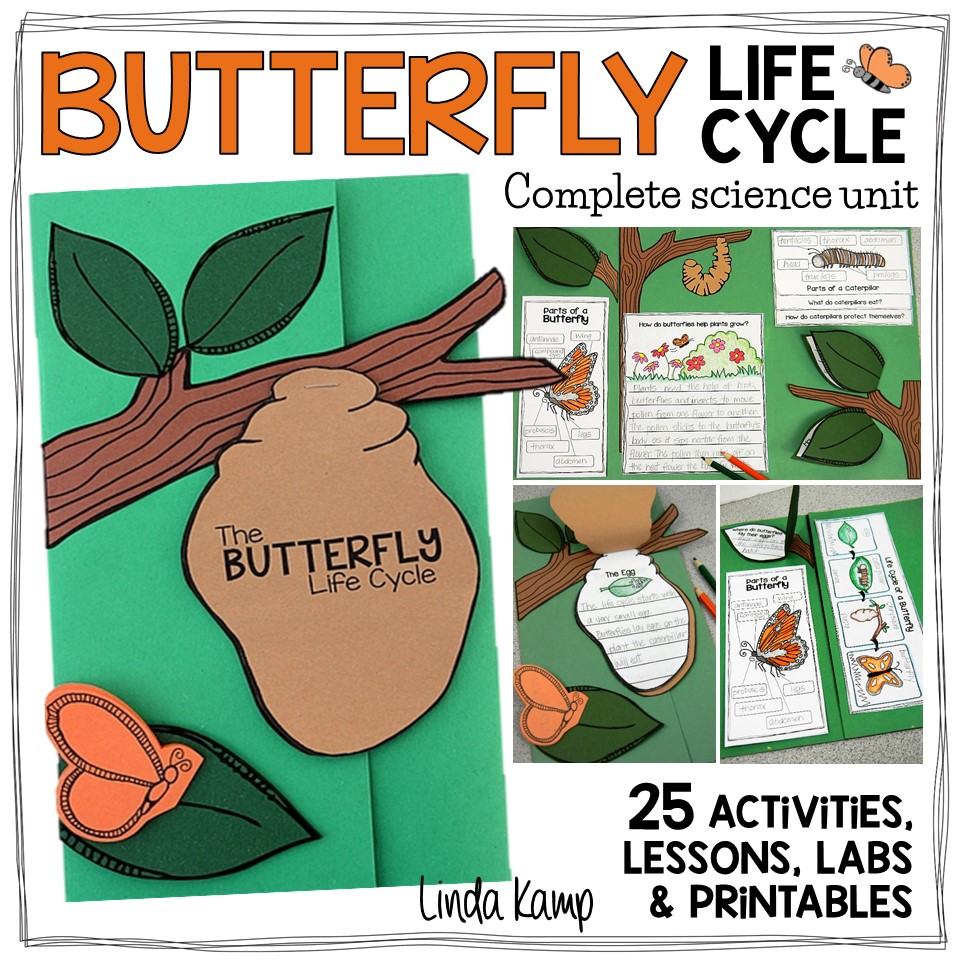 Butterfly Life Cycle Science Unit