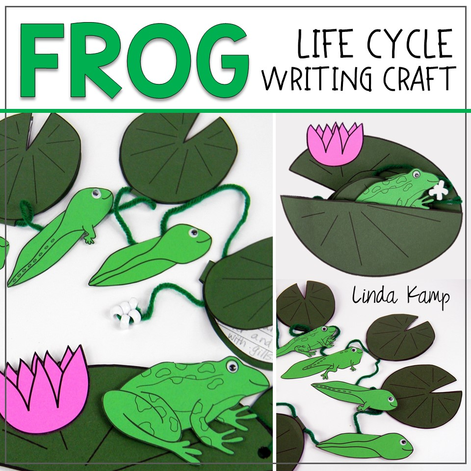 Frog Life Cycle Writing Craft