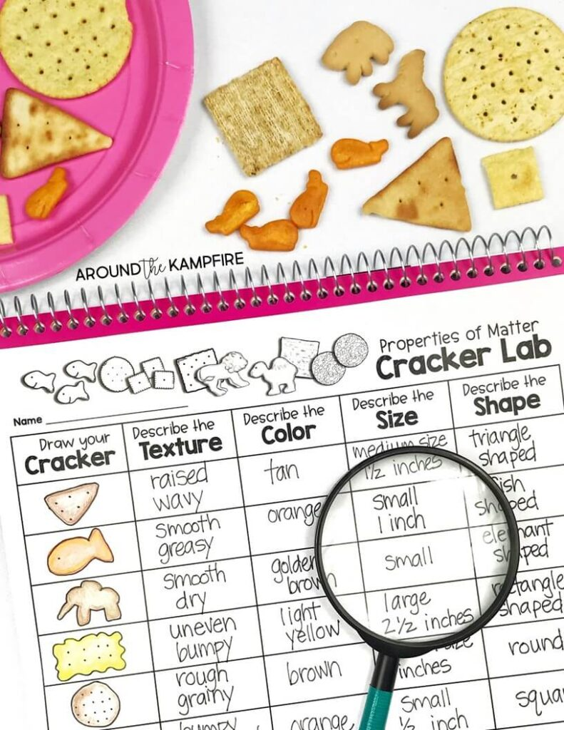 Properties of matter activities and experiments for 2nd grade. Describing properties cracker lab science activity. Students describe shape, color, size, and texture.