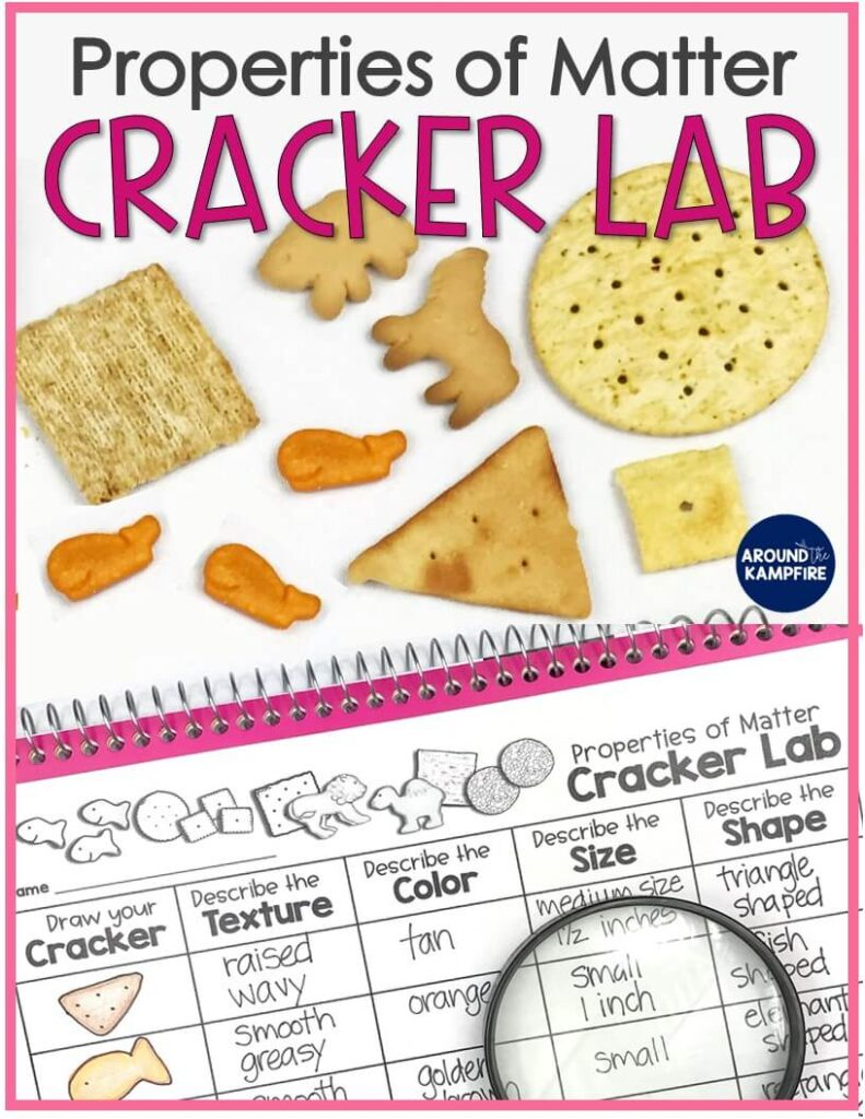 Easy cracker lab properties of matter activity for students learning to observe and describe matter. Ideal for 2nd grade science and aligned to Structure and Properties of Matter NGSS standards. #2ndgrade #scienceactivities #ngss