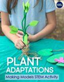 2nd grade Plants STEM Activities