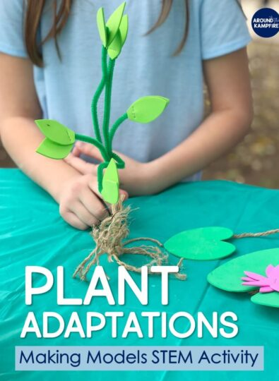 Plant STEM Activities for Kids: Making Models of Adaptations
