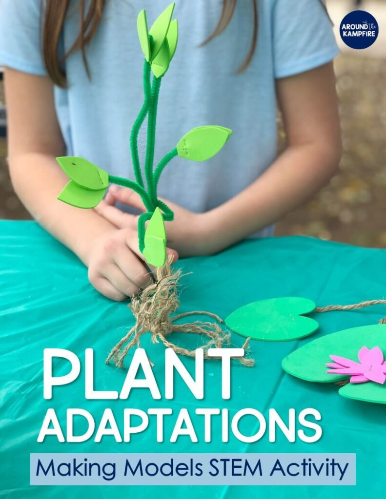 2nd grade Plants STEM Activities