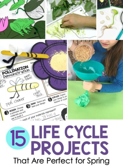 15 Life Cycle Activities That Are Perfect for Spring